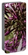 Trumpets Of Phlox Portable Battery Charger