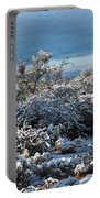 Tucson Covered In Snow Portable Battery Charger
