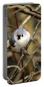Tufted Titmouse On The Watch Portable Battery Charger