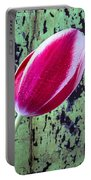 Tulip Against Green Wall Portable Battery Charger