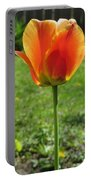 Tulip Backlit 14 Portable Battery Charger