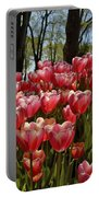 Tulip Festival Portable Battery Charger