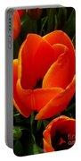 Tulip Orange Flower Portable Battery Charger