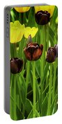 Tulip Race Time Portable Battery Charger
