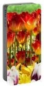 Tulip Stand In Mount Vernon Washington Portable Battery Charger