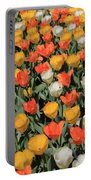 Tulip Stretch Portable Battery Charger