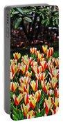Tulip Stripe Garden Portable Battery Charger