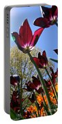Tulip Tango Portable Battery Charger