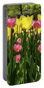 Tulip Time Pink Yellow Black Beauty Portable Battery Charger