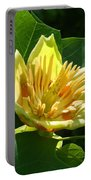 Tulip Tree Portable Battery Charger