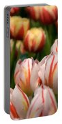 Tulips 31 Portable Battery Charger