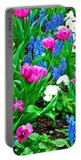 Tulips And Pansies And Grape Hyacinth By Lutheran Cathedral Of Helsinki-finland Portable Battery Charger