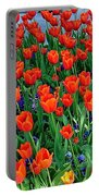 Tulips Are A Turkish Flower Bytopkapi Palace In Istanbul-turkey Portable Battery Charger
