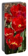 Tulips At Dallas Arboretum V83 Portable Battery Charger