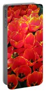 Tulips - Field With Love 28 Portable Battery Charger