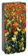 Tulips - Field With Love 50 Portable Battery Charger
