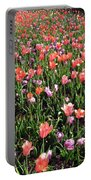 Tulips - Field With Love 55 Portable Battery Charger