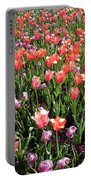 Tulips - Field With Love 56 Portable Battery Charger