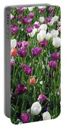 Tulips - Field With Love 60 Portable Battery Charger