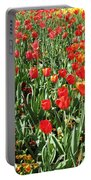 Tulips - Field With Love 62 Portable Battery Charger