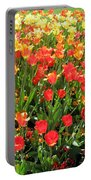 Tulips - Field With Love 68 Portable Battery Charger