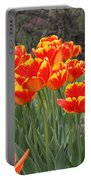 Tulips From Brooklyn Portable Battery Charger