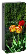 Tulips In The Spring Portable Battery Charger