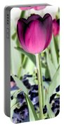 Tulips - Perfect Love - Photopower 2026 Portable Battery Charger
