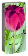 Tulips - Perfect Love - Photopower 2053 Portable Battery Charger