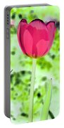 Tulips - Perfect Love - Photopower 2070 Portable Battery Charger