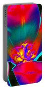 Tulips - Perfect Love - Photopower 2155 Portable Battery Charger