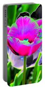 Tulips - Perfect Love - Photopower 2190 Portable Battery Charger