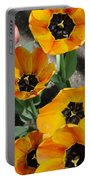 Tulips Tp Portable Battery Charger