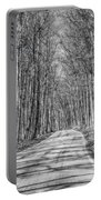 Tunnel Of Trees Black And White Portable Battery Charger