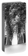 Tunnel Of Trees Portable Battery Charger