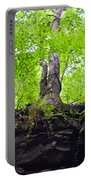 Tunnel Tree Portable Battery Charger