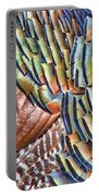 Turkey Feather Colors Portable Battery Charger