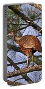 Turkey In A Tree Portable Battery Charger by Al Powell Photography USA