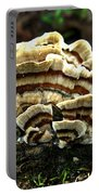 Turkey Tail Fungi Portable Battery Charger