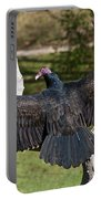 Turkey Vulture Cathartes Aura Portable Battery Charger