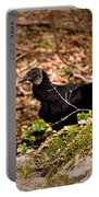 Turkey Vulture Portable Battery Charger