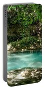 Turquoise Forest Pond On A Summer Day No3 Portable Battery Charger