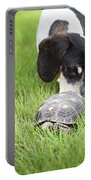 Turtle Chase Portable Battery Charger