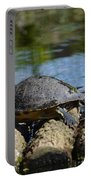 Turtle Float Portable Battery Charger