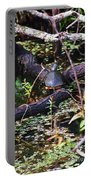 Turtle In The Glades Portable Battery Charger