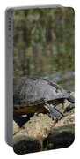 Turtle On A Raft Portable Battery Charger