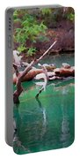 Turtle Retreat Portable Battery Charger