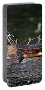 Turtle Sun Bathing Portable Battery Charger