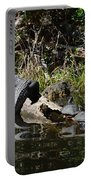 Turtles And Gator Portable Battery Charger