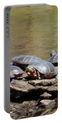 Turtles Portable Battery Charger